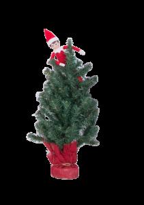 Elf_in_Tree