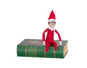 Elf_on_Book