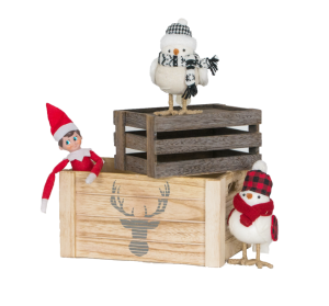 Elf_with_Birds_in_Boxes