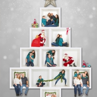 Tree-Box-Collage